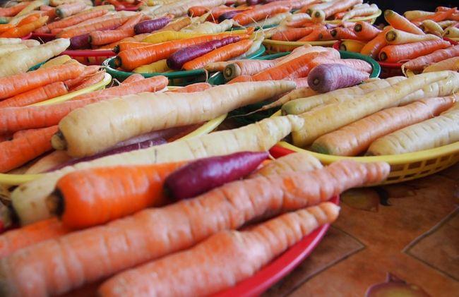 10 Beneficios Y Propiedades De La Zanahoria Nuevas Evas Las zanahorias se pueden encontrar de todos los tamaños, formas y colores. propiedades de la zanahoria