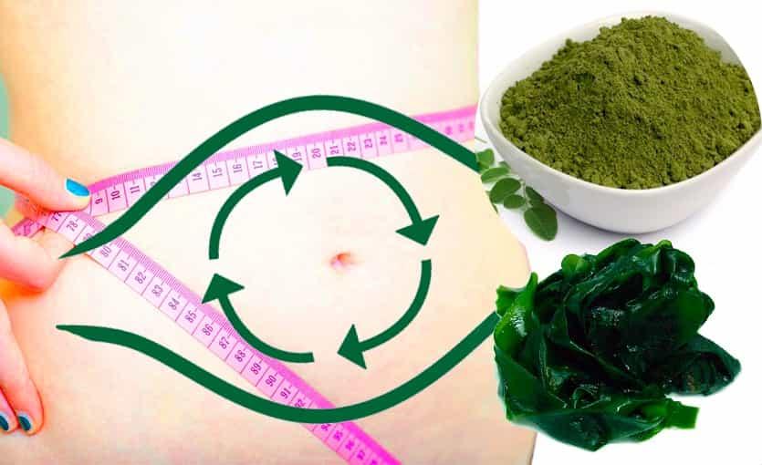 7 Consejos para Acelerar tu Metabolismo naturalmente y Perder Peso rápido